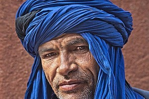 Best PDI In  CompThe Berber by David Stout