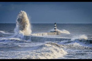 """""""North Westerly"""" by Chris Morton"""