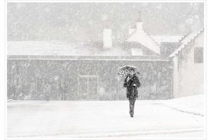 """A Walk in a Snow Storm"" by Helen Herbert"