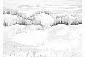 """Snowfield' by Keith Snell"